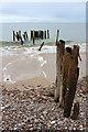 NJ0164 : Old Groyne, Culbin Beach : Week 7