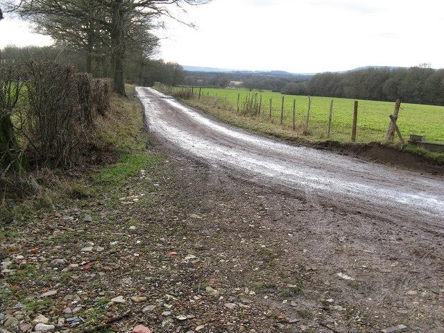 View SW down bridleway