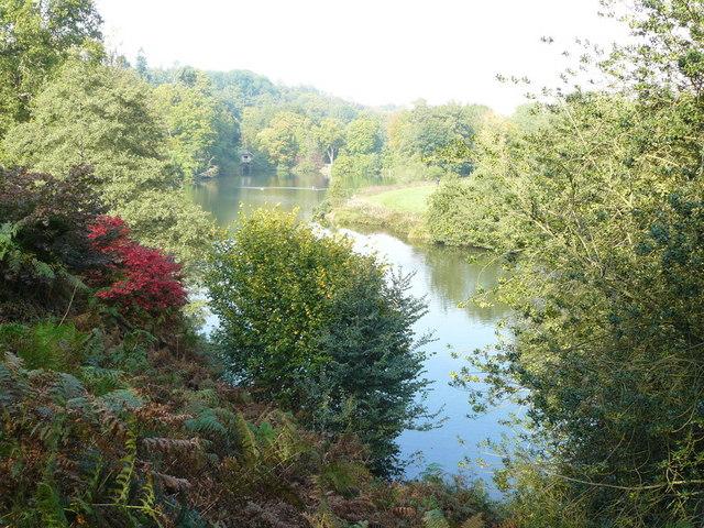 Lake at Winkworth Arboretum