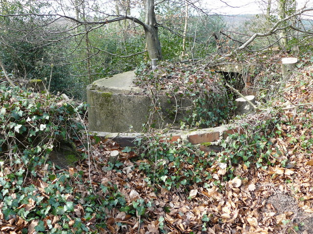 Gun Emplacement at Grayswood Common