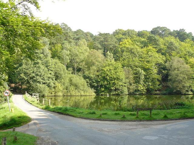 Mill Pond at Friday Street