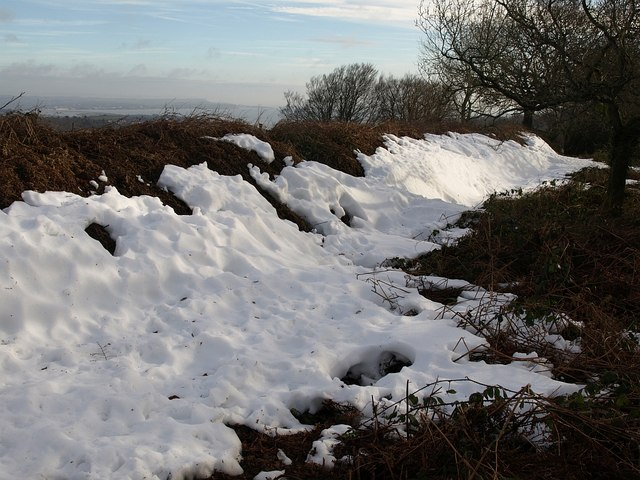 Snow on Holcombe Down