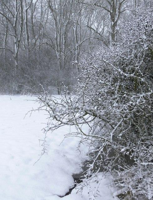 Winter scene west of the M1 Motorway