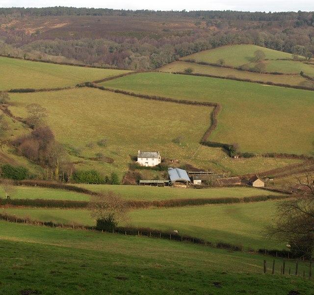 Lidwell Farm