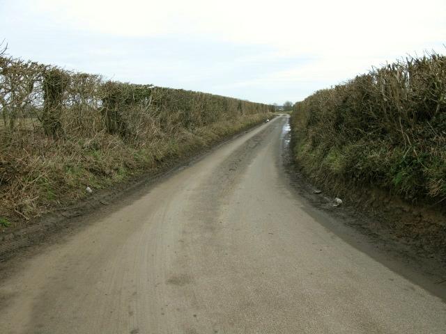 View along Satmar Lane towards West Hougham