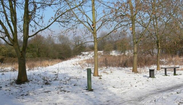 The Aylestone Meadows