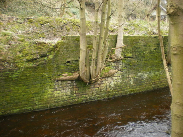 Tree growing out of wall below Lee Mill Bridge