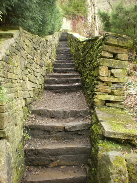Steps off Lee Mill Road