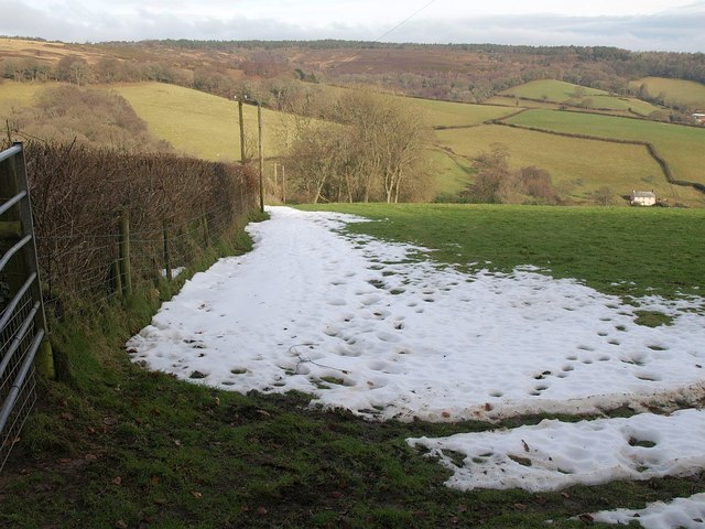 Snowy field edge, Holcombe Down