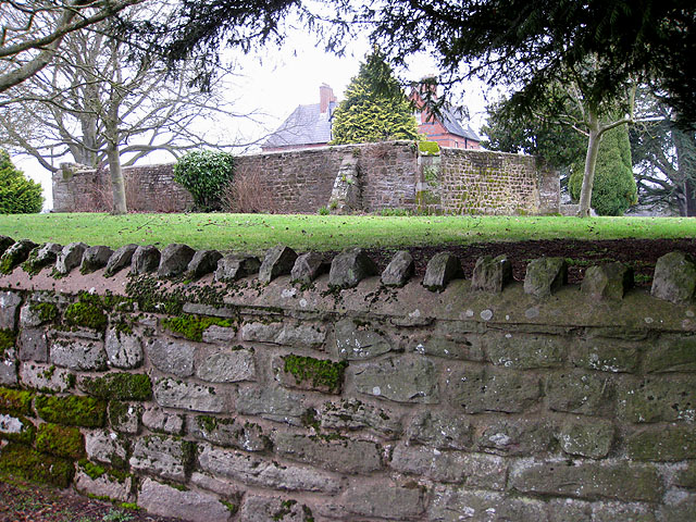 Remains of St Peter's Church, Bullinghope