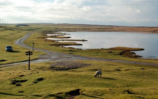Ardnave Loch Shore