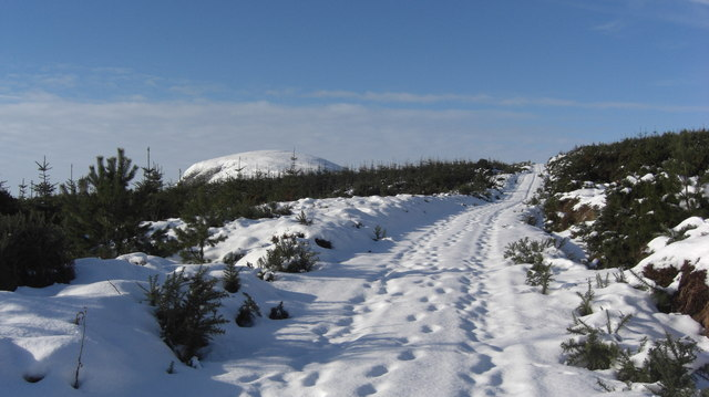 Track leading towards Loch Lunddaidh