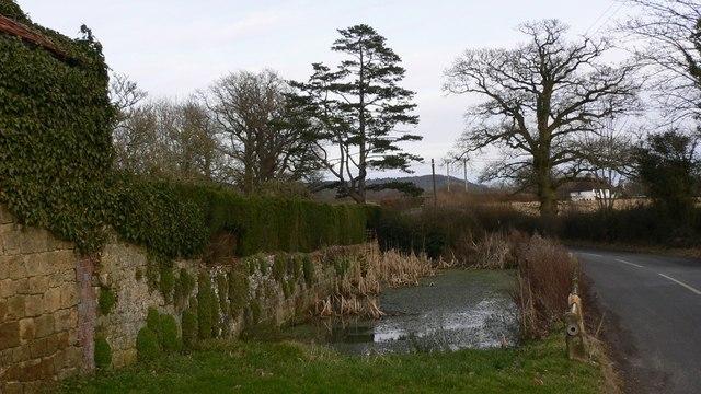 Pond by Highbuilding Farm