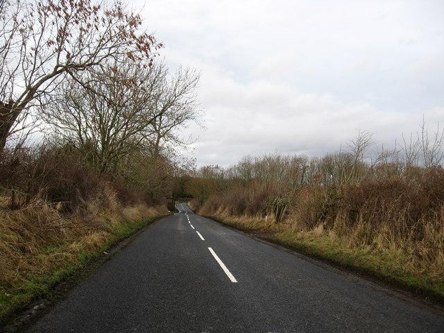 Rural road heading for Norham