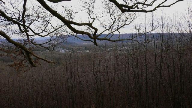 View of Fernhurst