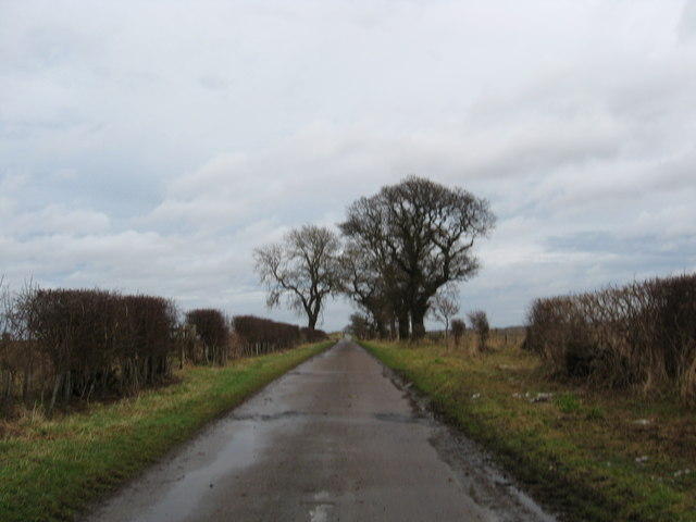 Farm service road near Grindon