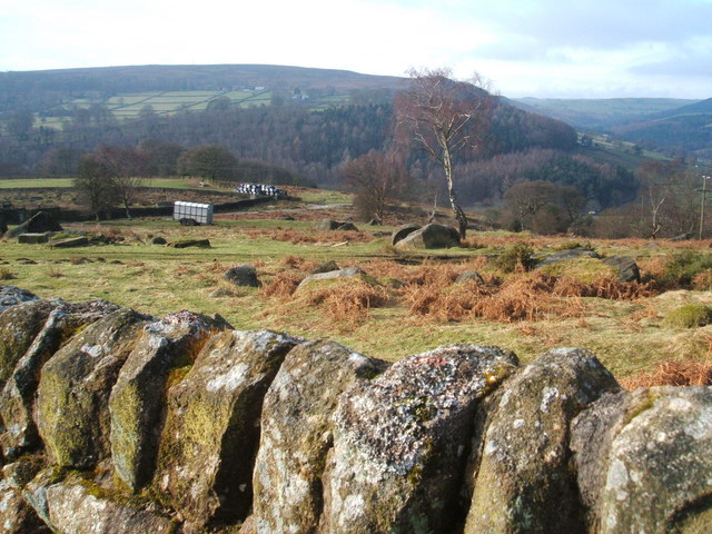 View  of Derwent Valley