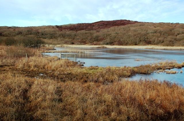 Loch Tallant View