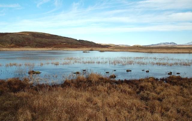 Across Loch Tallant