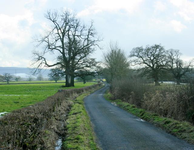 2009 : Foghamshire Lane