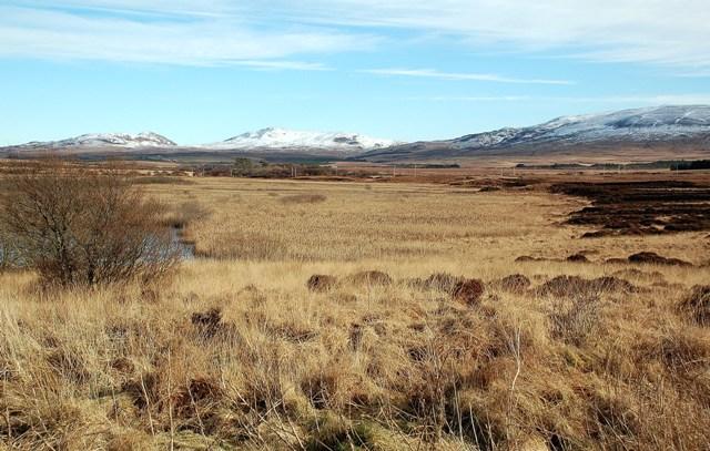 Loch Tallant Marsh