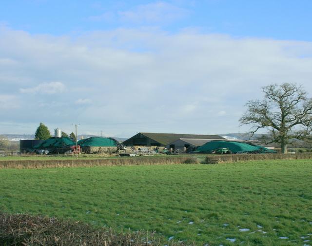 2009 : Marston Main Farm