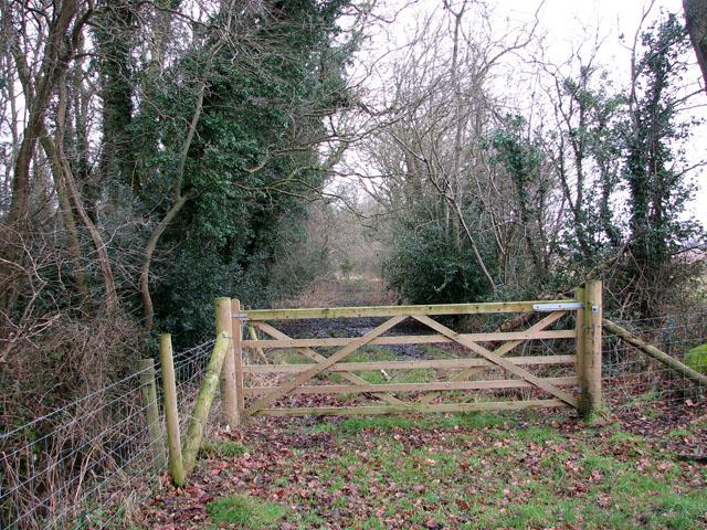 Gate in corner of pasture