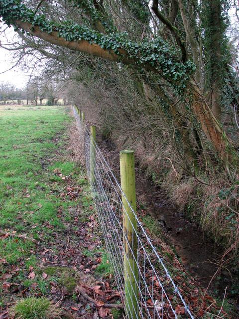 Rylock fence surrounding sheep pasture