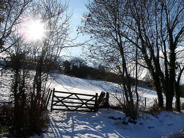 Snowy landscape near Joys Green