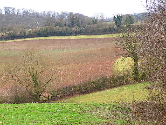 Footpath near Callow