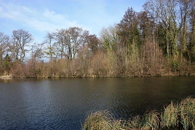 Mill pond dam, Upper Arles Wood