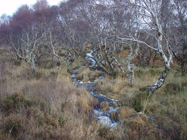 Allt Loch nan Uain