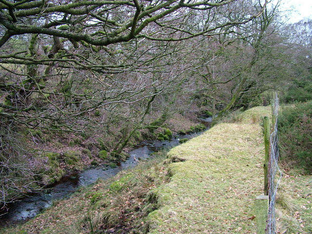 A tributary of the River Irthington