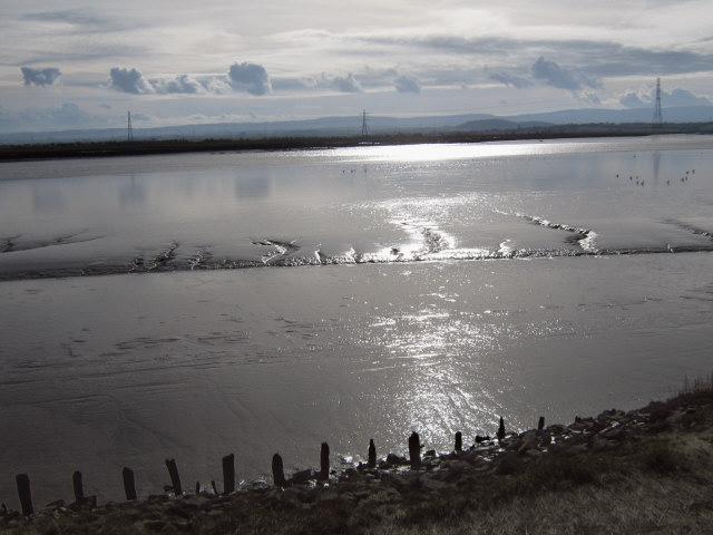 Mudbanks on the River Parrett