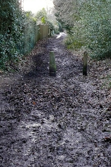 Bridleway at Whitchurch Hill