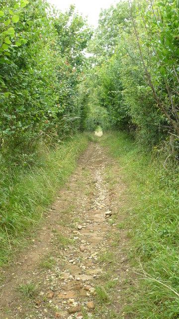 Footpath Near Chipstead