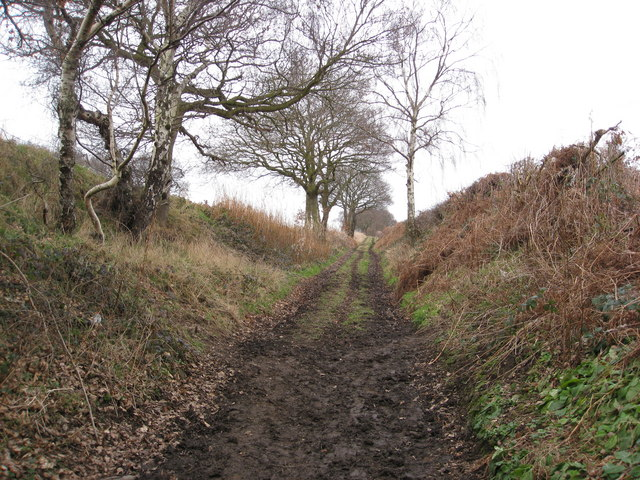 Track to Plumbley