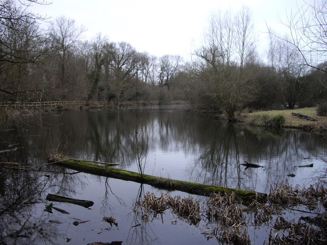 Lake by Collin's Coppice