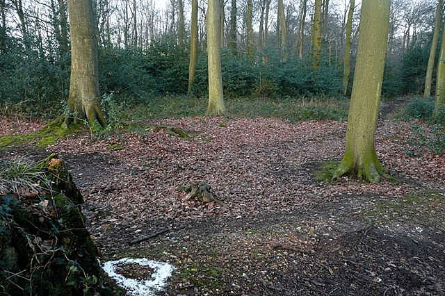 Entrance to Gutteridge's Wood