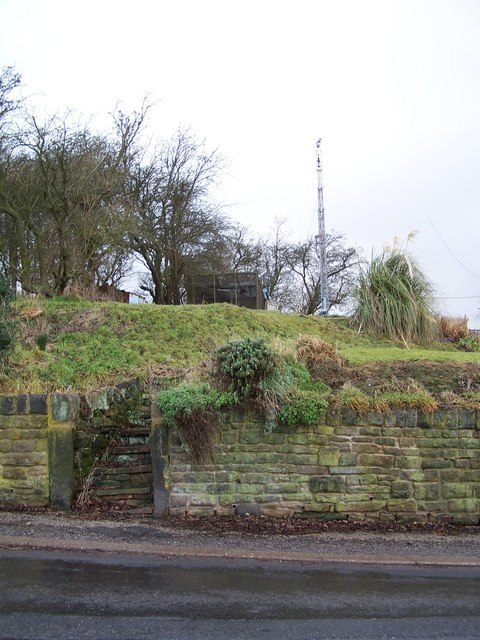 Mast and Steps, Long Lane, near Worrall