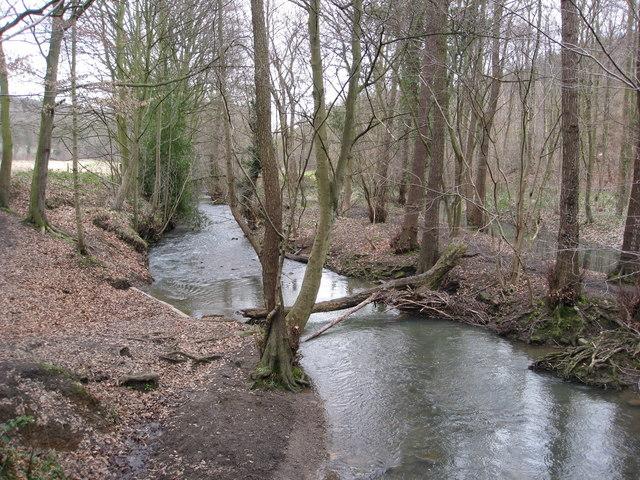 Moss Brook - View from Footbridge