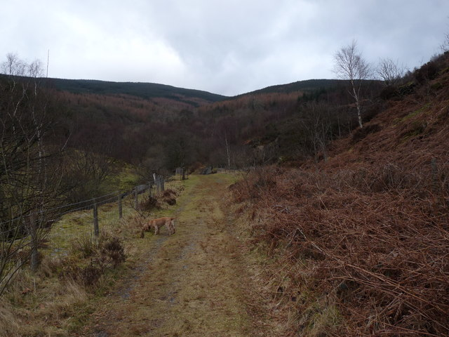 Track towards Abercwmeiddaw quarry
