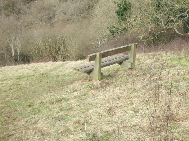 Seat in the Duryard Valley Park