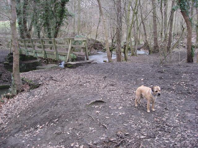Footbridge over Moss Brook