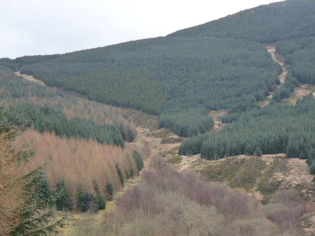 Nant Cwmeiddaw valley