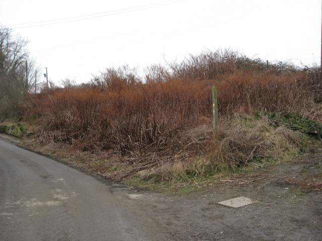 Footpath off Geer Lane