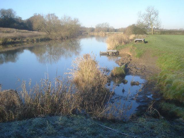 River bank opposite Strensham