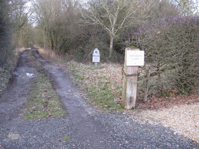 Byway to Steer's Common, a National Trust place