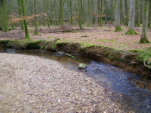 Latchmoor Brook