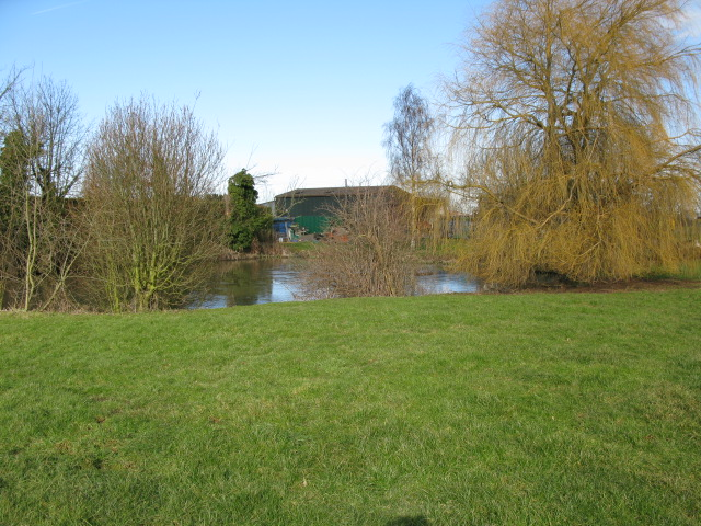 The pond at Little Walmestone